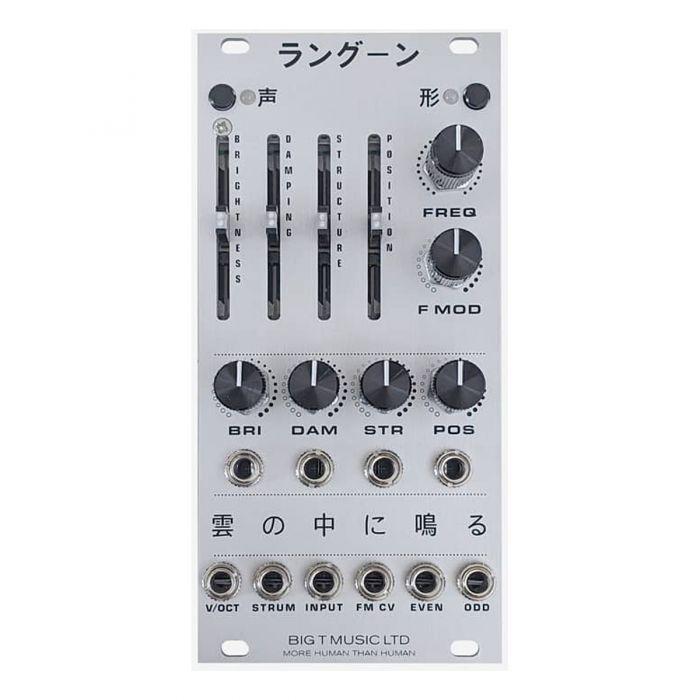 Big T Music Rangoon Eurorack Resonator Module (Silver)