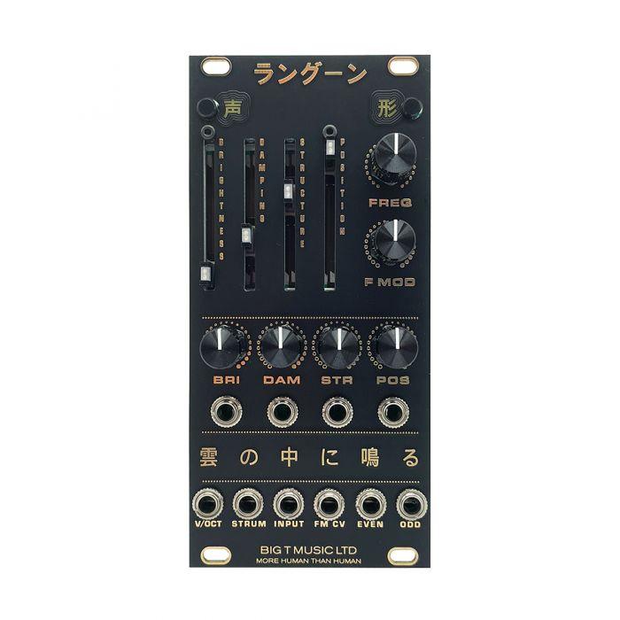 Big T Music Rangoon Eurorack Resonator Module (Black)